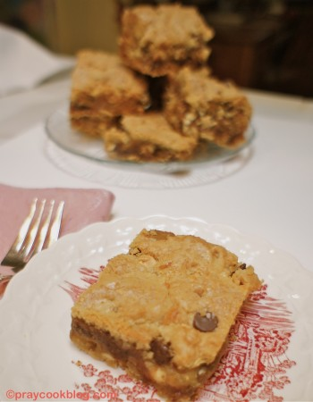 Sweet and Salty Chocolate Chip Bars