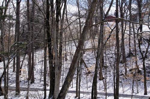 TN Red Barn in Winter