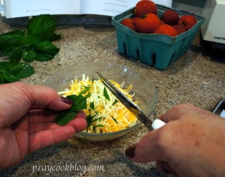 TWD Cutting basil