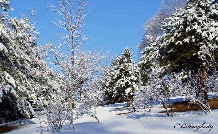 Snowy Blue Sky