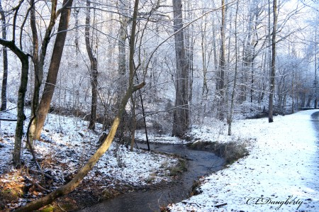 Winding Snowy Creek