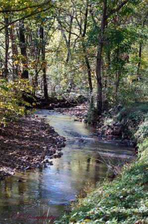 As the creek winds