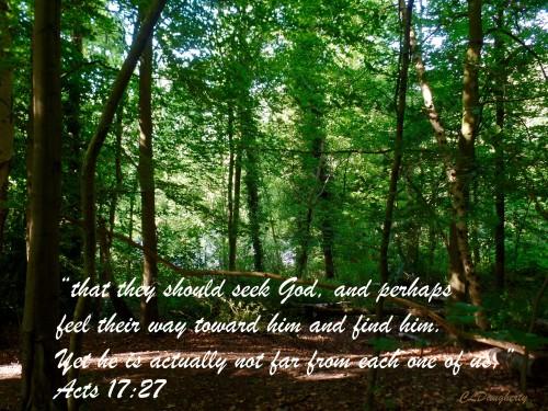 Acts 17-27 CS Lewis