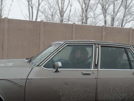Driving Ms. Calf