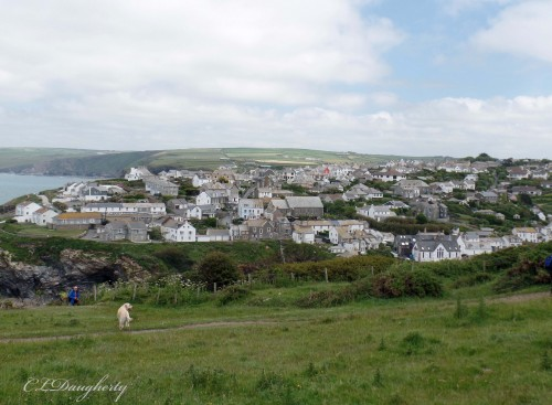 Port Isaac from the grass above the city