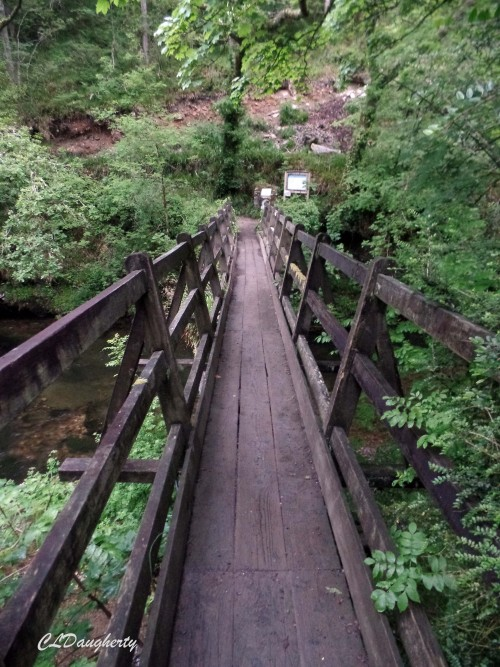 Bridge solitude