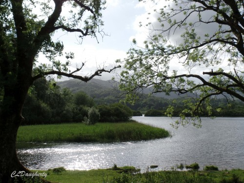 Solitary Walk in the Lake District of England