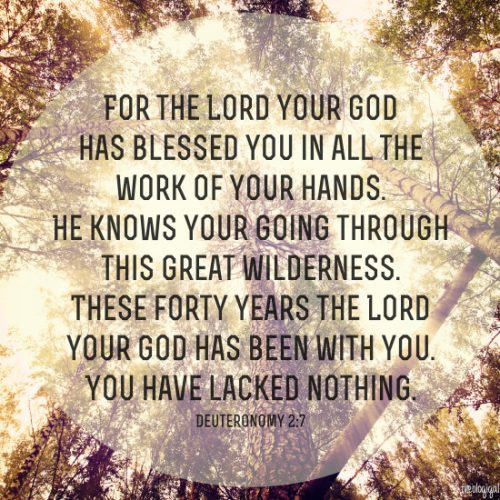 bible-verse-deuteronomy-27-for-the-lord-your-god-has-blessed-you-in-all-the-works-of-your-hands-2014