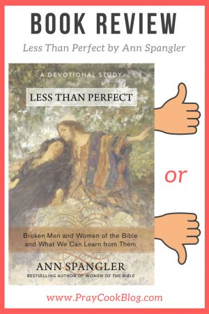Less Than Perfect by Ann Spangler: Book Review
